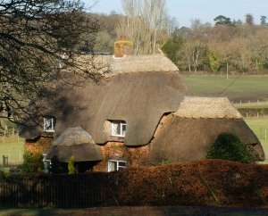 Another beautiful thatched cottage