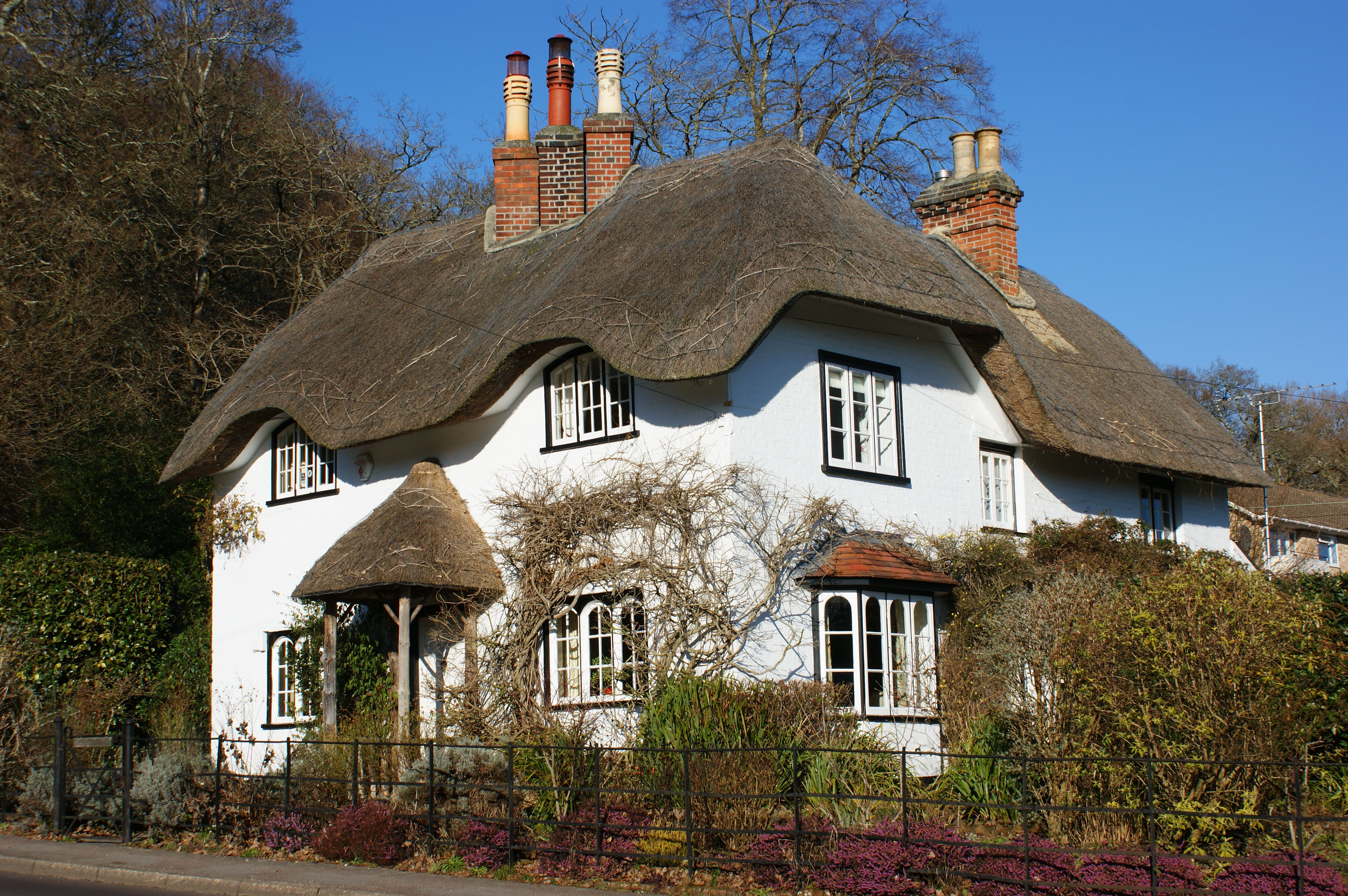 A Walk In The New Forest Deer Thatched Cottages And New