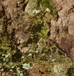 Tree bark image after some special effects