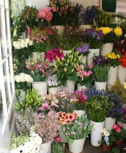 Flower Shop in Argyle Street
