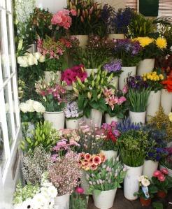 Flower Shop in Argyle Street