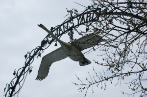 Swans Yard, Shaftesbury