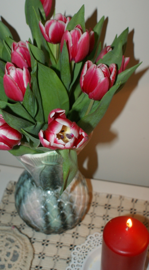 Wonderful Sprint tulips in dear old Bertha's favourite vase