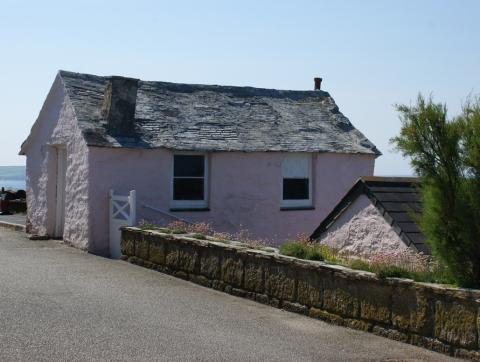 little pink net loft