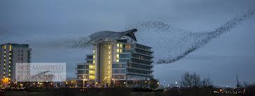 St Davids Hotel, Cardiff