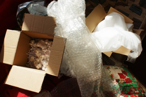 bubble wrap, polystyrene chips, cardboard boxes, packing tape - the lot