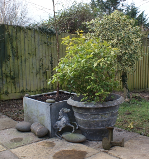 next to an original zinc tub, it looks good with the old lead horse that came with me years ago from Wales