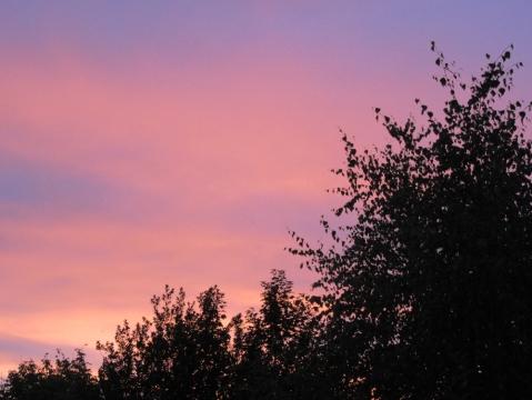 Last evening's sunset
